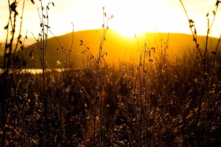 colinnearmansurfwanderer.com 16